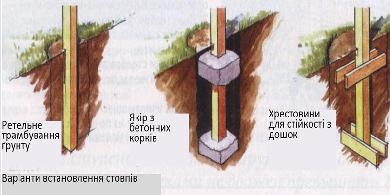 chesnparkan6.jpg (70.88 Kb)