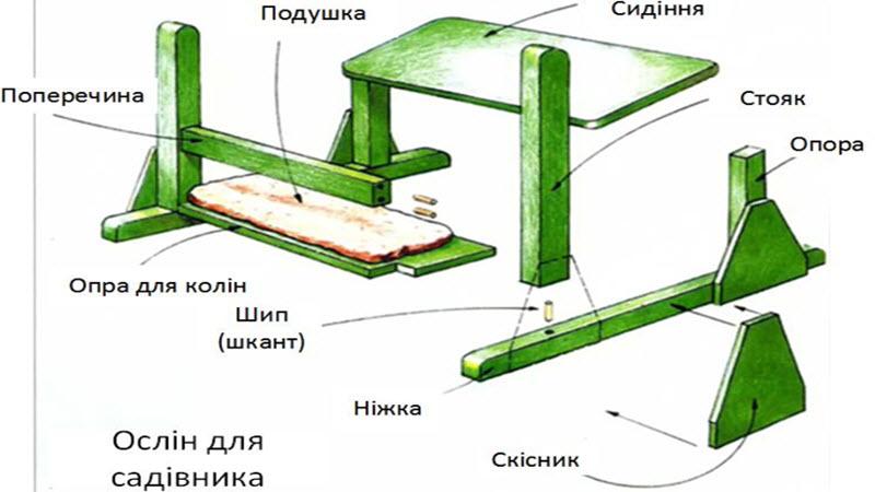 oslin1.jpg (58.98 Kb)